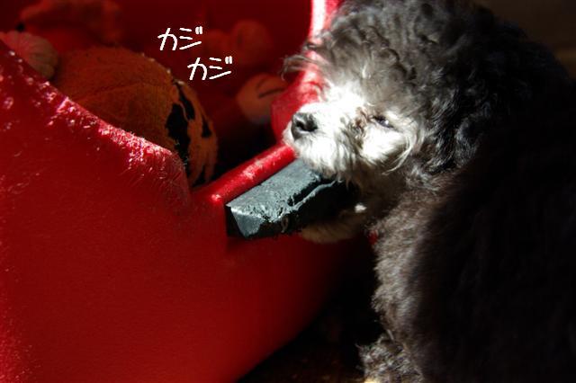 2008.5.21ヴィッケ&ロッタ 107 (Small)