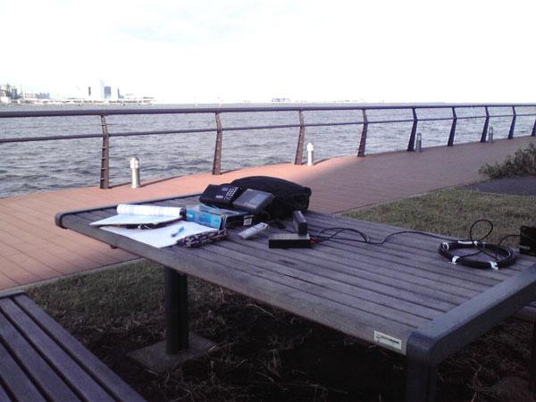 東扇島東公園にて2台のRX(DE1103とDE1121)でワッチ
