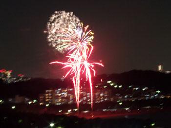 沢海の公園で打ち上げられた花火