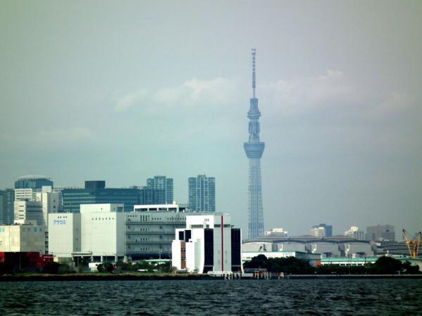城南島海浜公園 東京スカイツリーを望む