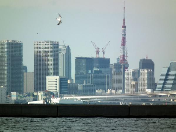 城南島海浜公園 東京タワーを望む