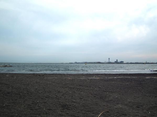 城南島海浜公園 広い砂浜がありました