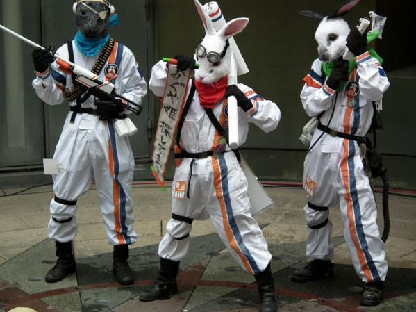 ウサギに仮装し、かぐや姫を探しているとか