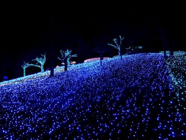 「さがみ湖イルミリオン'11-'12」 光の海の風景(6)