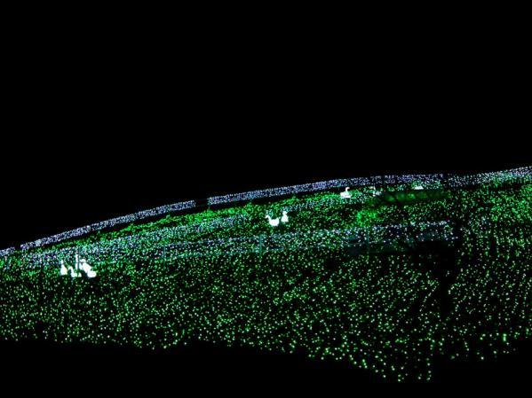 「さがみ湖イルミリオン'11-'12」 光の動物園