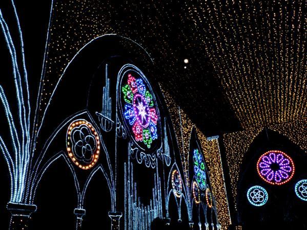 「さがみ湖イルミリオン'11-'12」 光の大聖堂(2)