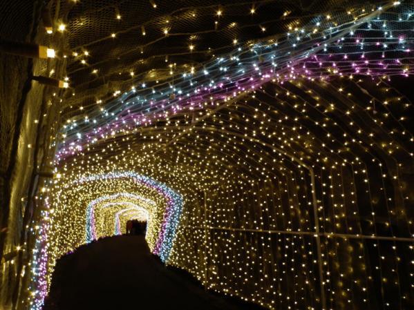 「さがみ湖イルミリオン'11-'12」 光のトンネル