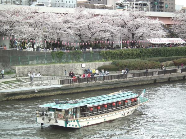 隅田川を行く屋形船と川沿いの桜と