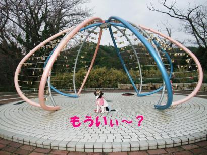 コピー ~ DSCF9848