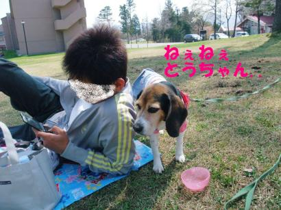 コピー ~ DSCF0301