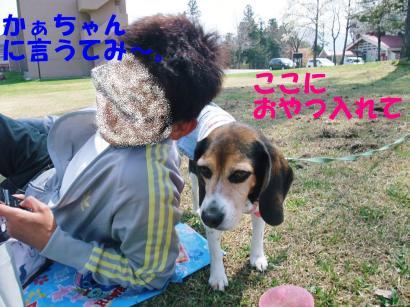 コピー ~ DSCF0300