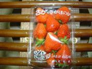 food2008_101.jpg