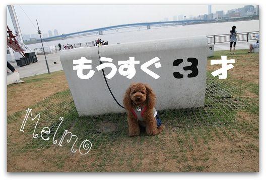 IMG_5862.jpg