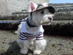 千倉海岸でカモ帽子