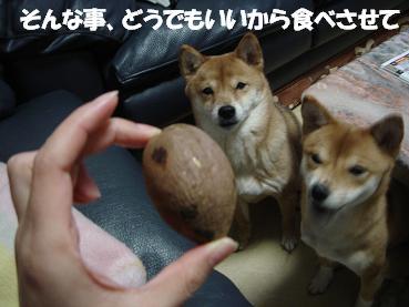 芋食べたい