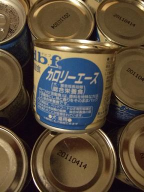 2008.06.01 ちゃーちゃん②