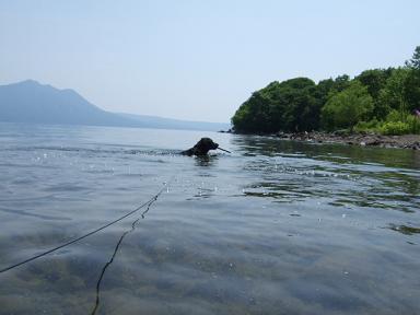 2008.07.02  支笏湖初⑧