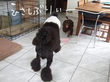 2008.07.21 カント③