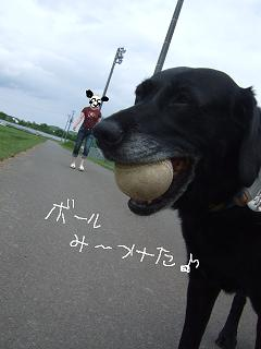 2008.07  コテージ⑧