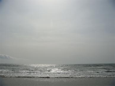 Feb22,2009sea1
