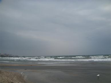 April4,2009sea1