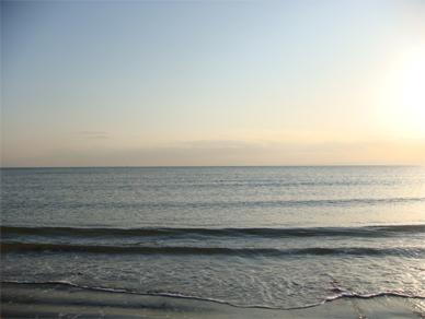 March2,2009sea1