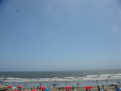 July26,2009sea1