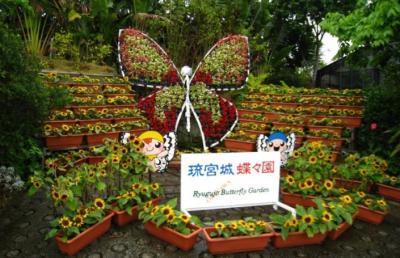 2009沖縄16