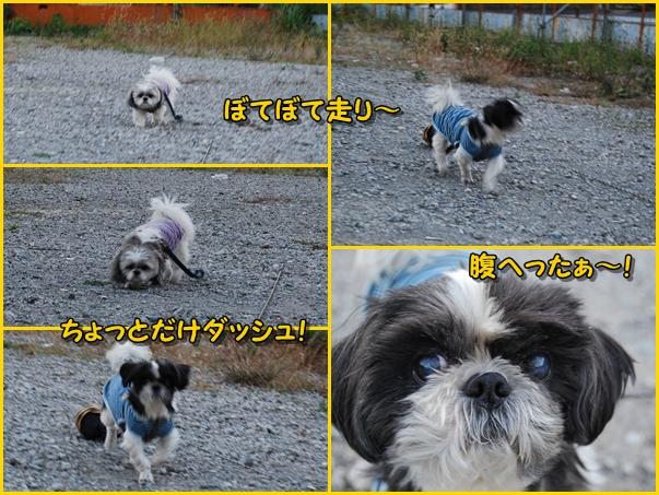 benkura2008-11-20-14.jpg