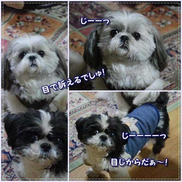 benkura2008-12-10-1.jpg
