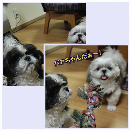benkura2008-12-10-2.jpg