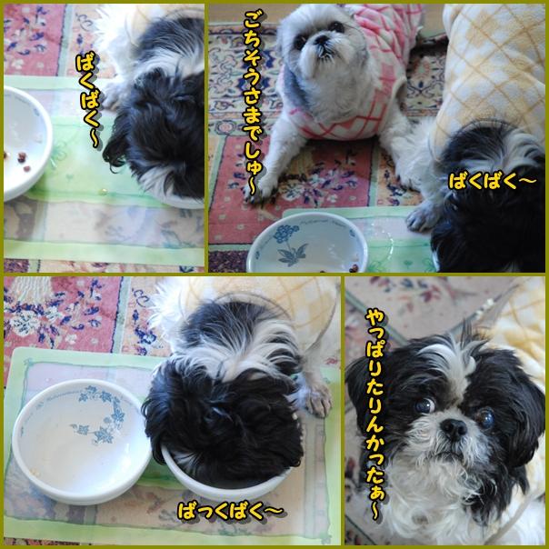 bk0111-3.jpg