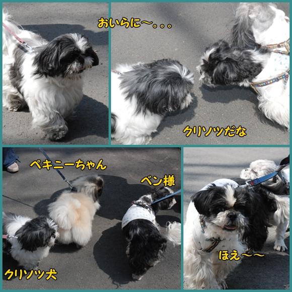 bk0321-53.jpg