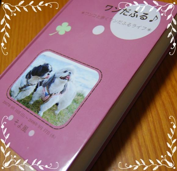 book1DSC_0229.jpg