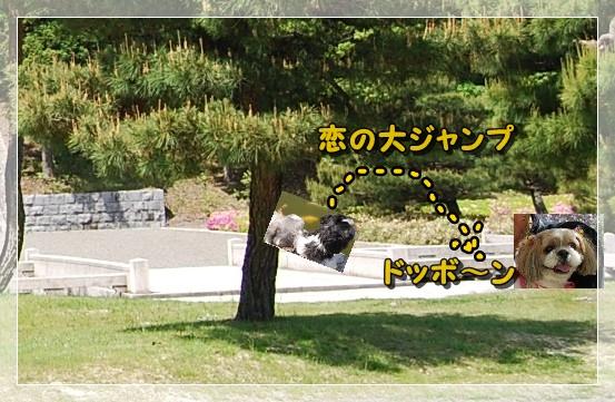 bpocha5DSC_0450.jpg