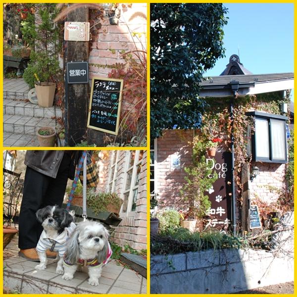 cafe2008-11-23-2.jpg