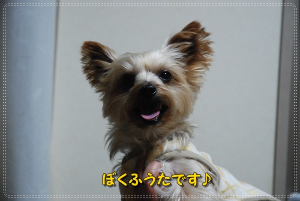 fukun0225-6DSC_0313.jpg
