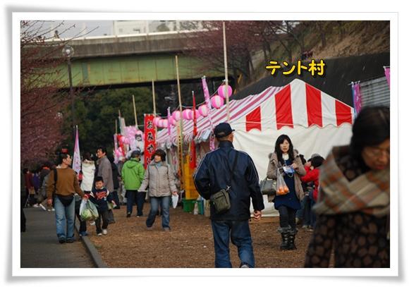 kawazu0211-17DSC_0620.jpg