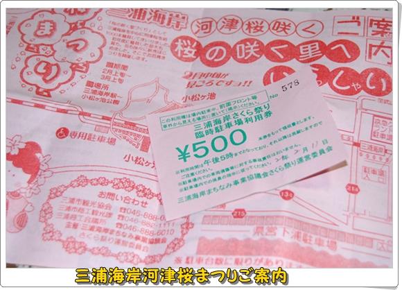 kawazu0211-8DSC_0865.jpg