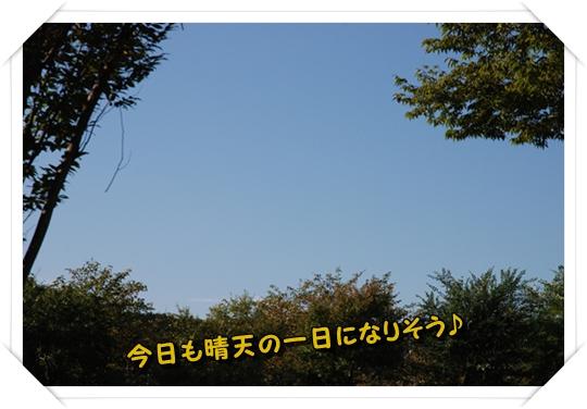 kinchakuda16DSC_0002.jpg