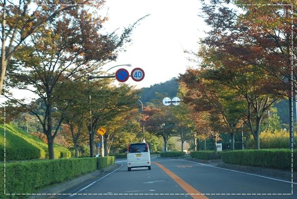 koyasu1DSC_0003_20081104190553.jpg