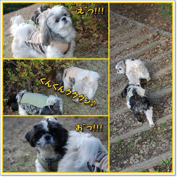 ksm2008-12-04-6.jpg