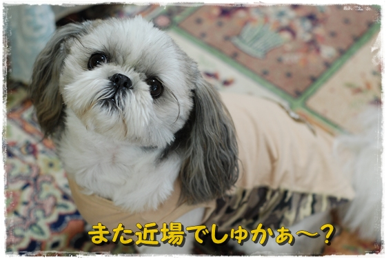 kurarajitaku1DSC_0101.jpg