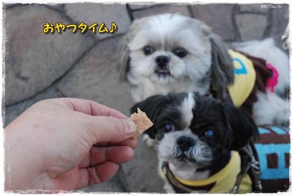 kurihama0214-13DSC_0136.jpg