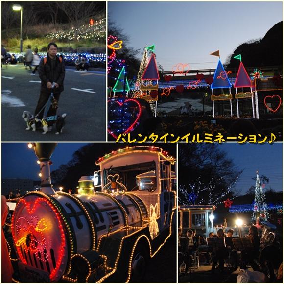 kurihama0214-20.jpg