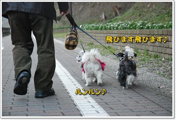 kurihama0214-2DSC_0036.jpg