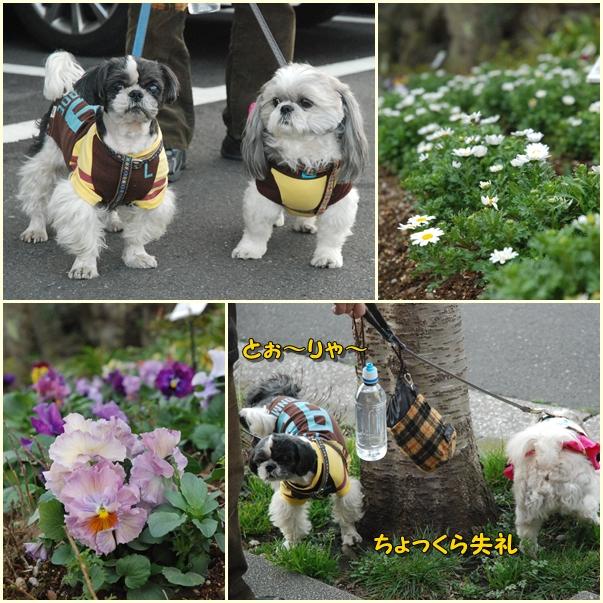 kurihama0214-4.jpg