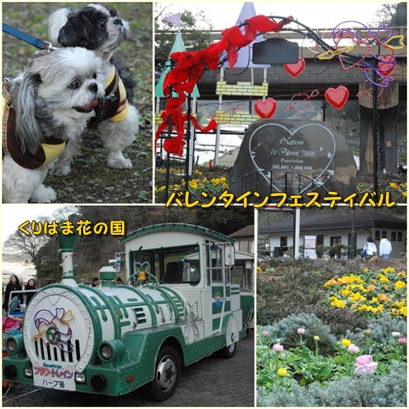 kurihama0214-5.jpg