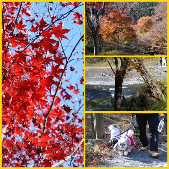 mitake2008-11-23-4.jpg