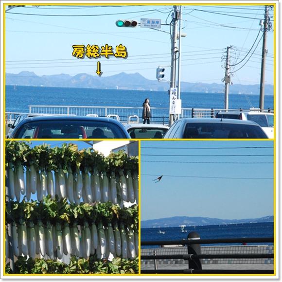 miura0125-1.jpg